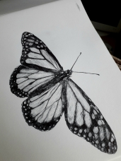 Biro Butterfly on a Hahnemühle FineArt Sketch Pad by Artist Natalie Knowles